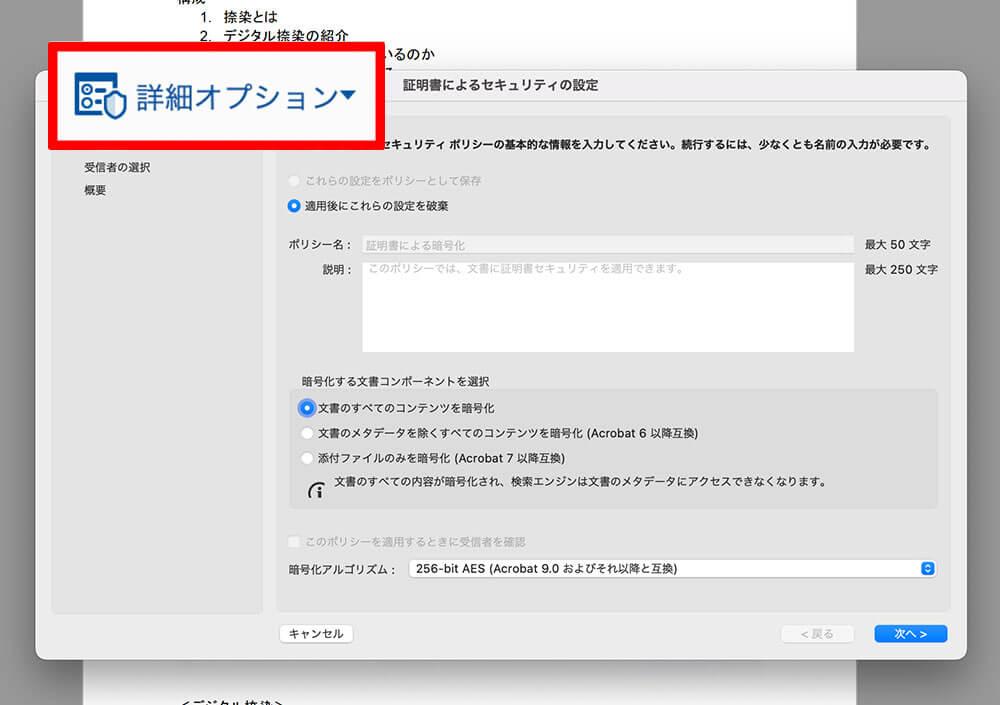 PDF詳細オプション
